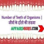 Number of Teeth of Organisms - AffairsGuru