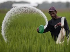 CCEA approves continuation of ongoing urea subsidy scheme beyond 12th Five Year Plan