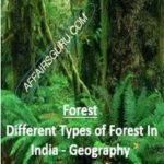 Different Types of Forest In India - Geography